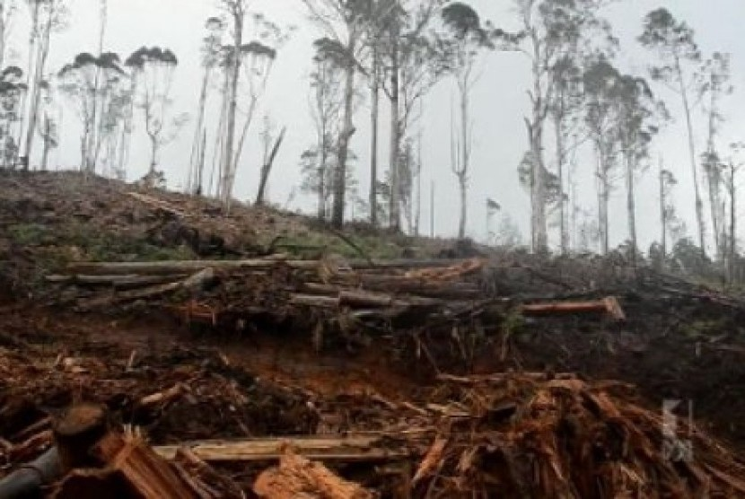 Kalbar Luncurkan Program Menjaga Kelestarian Hutan...